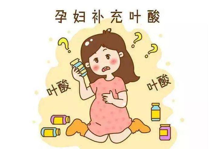 孕期为什么要补充叶酸叶酸的重要性