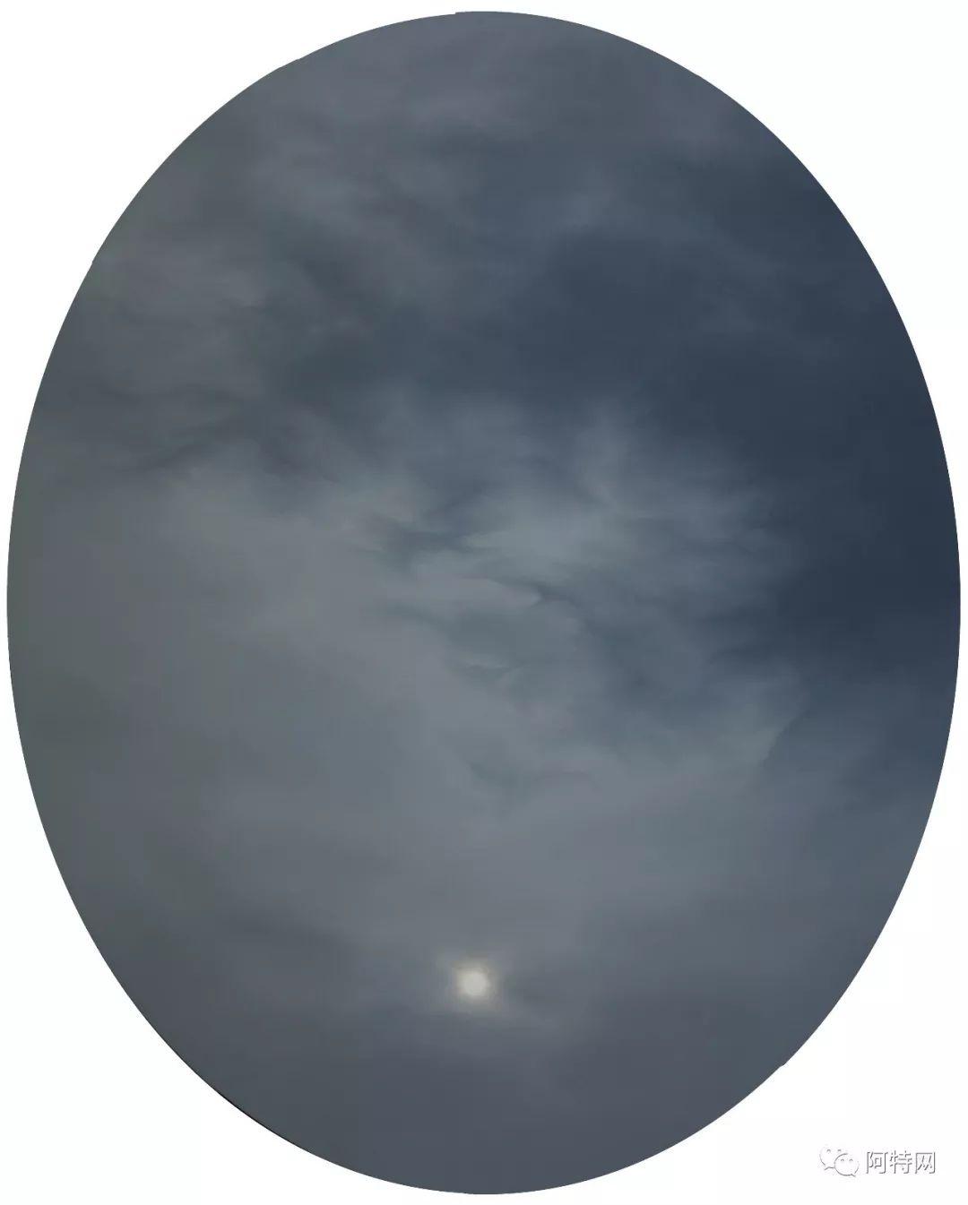 云的在场系列2012-2013布面螳螂100100xx8080cm联盟英雄油画秒人视频教学视频教学视频教学图片