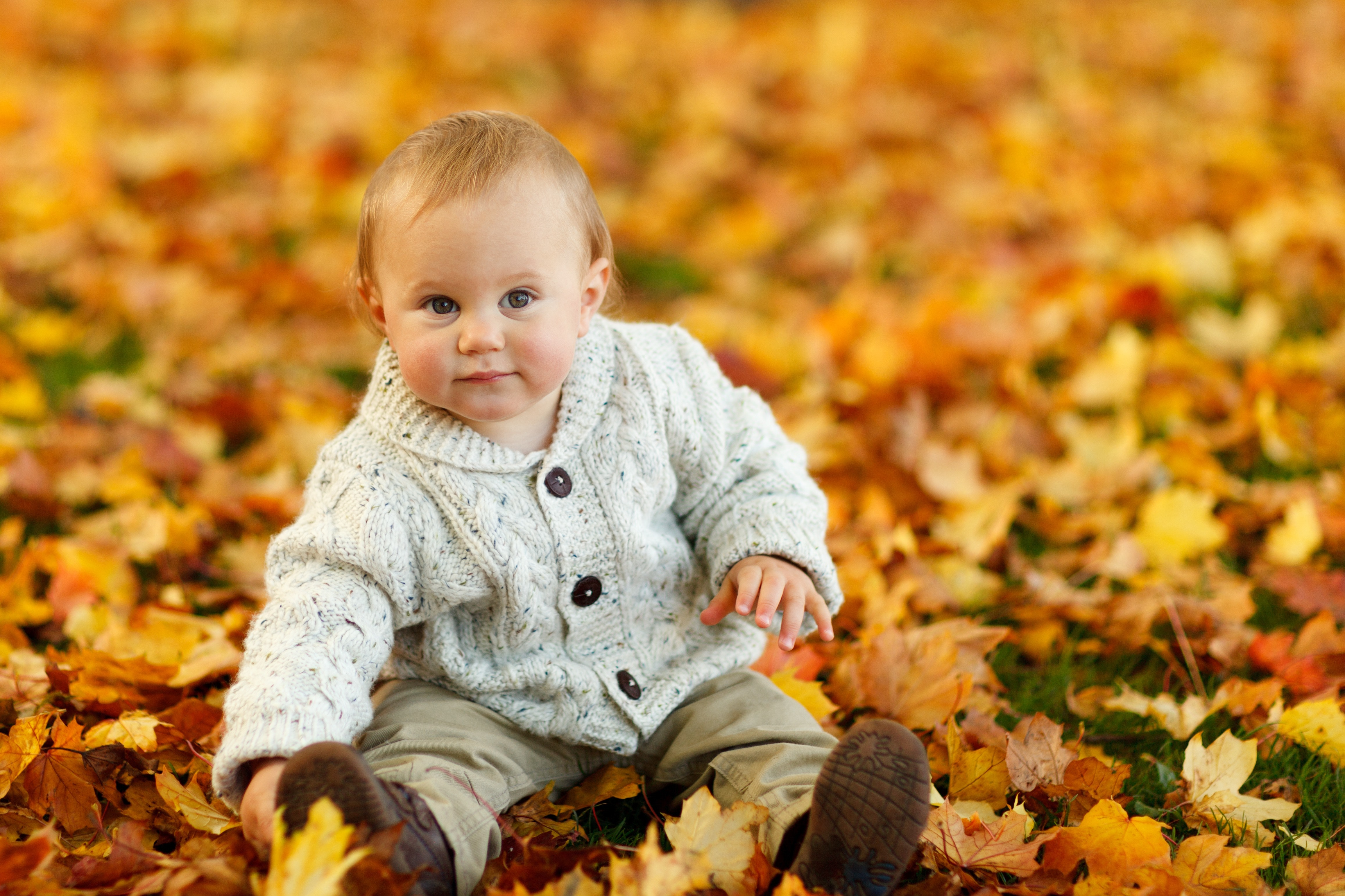 <b>面对疾病频发的秋季,宝宝的身体健康应该从何抓起?</b>