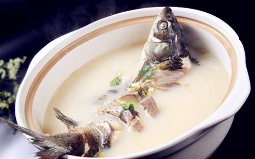 【养宠经验分享】狗狗缺钙可以吃鱼头汤,狗喝鱼头汤补钙有用吗