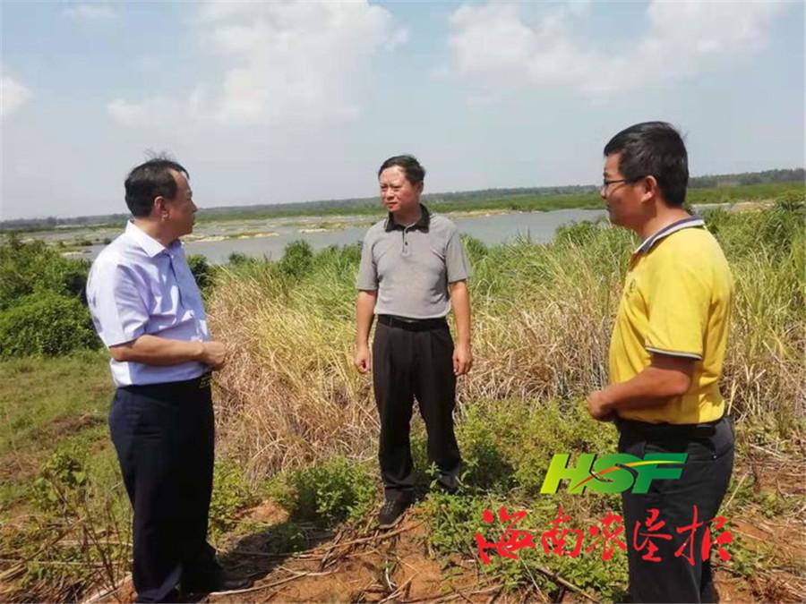 张志坚到西联农场公司指导产业发展工作