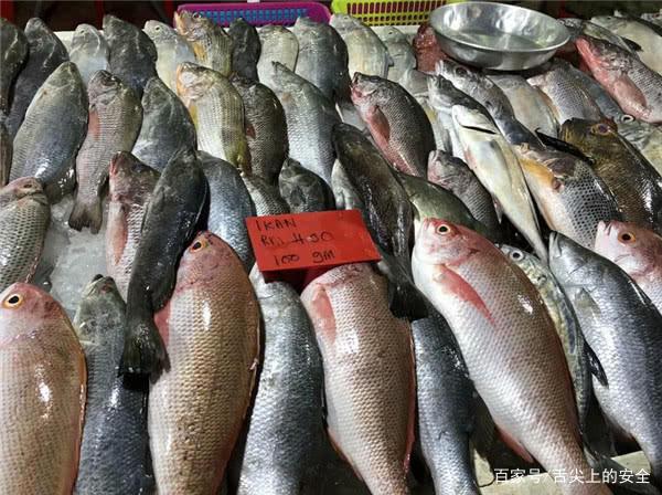 这鱼只能买到鱼头,鱼身子到哪里去了?想不到我们吃的都是边角料