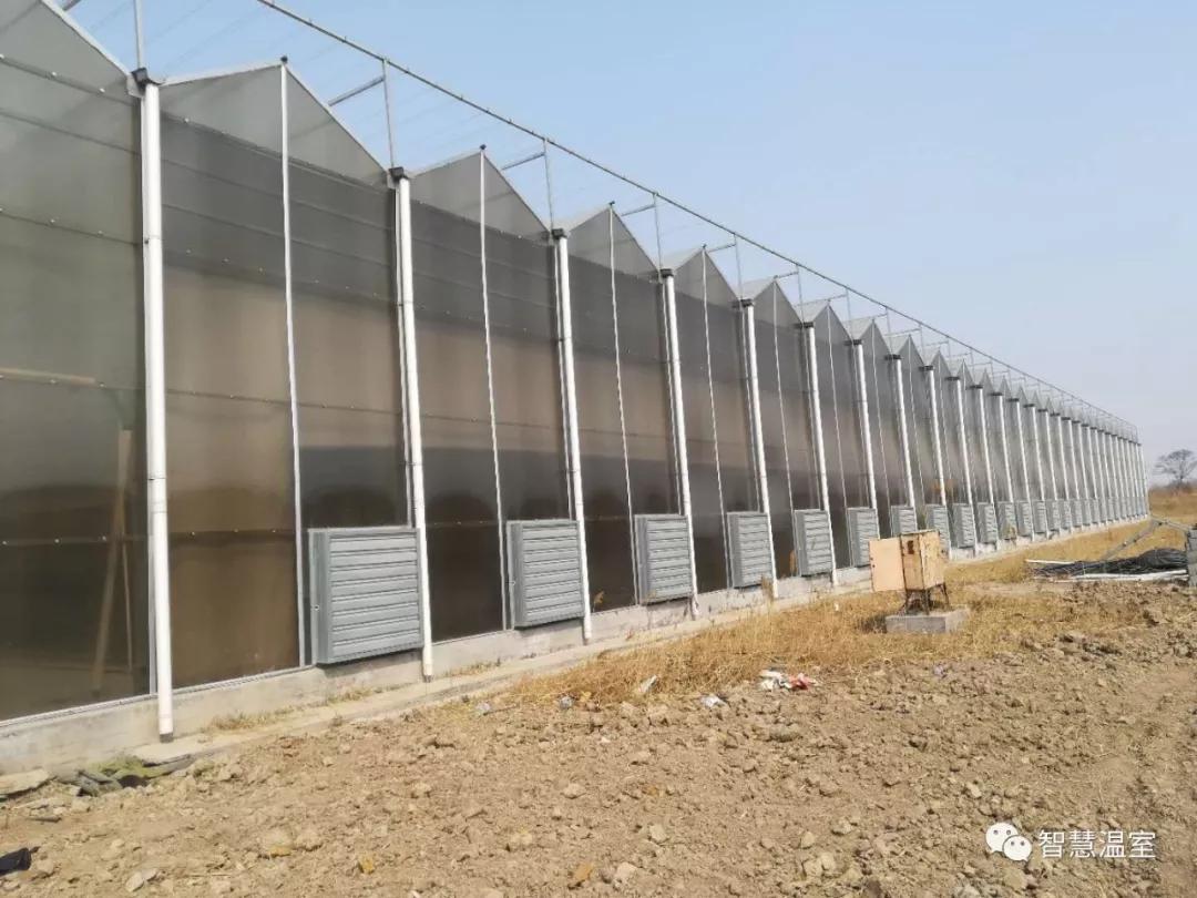 山东潍坊大跨度温室大棚秋冬施肥注意事项价格 - 中国供应商
