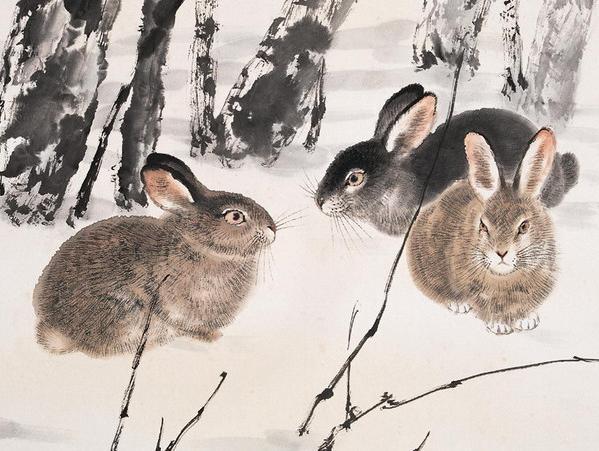 <b>几月份出生的属兔人,20岁成才,30岁成器,注定与穷无缘</b>