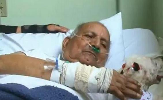 84岁老主人住院,狗狗被允许前往探望,重逢场面让人泪目