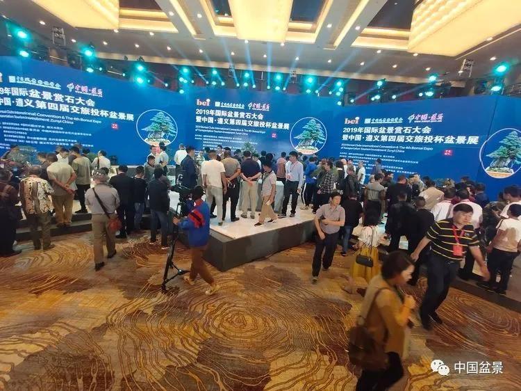2019年国际盆景赏石大会现场制作篇之三:郑志林