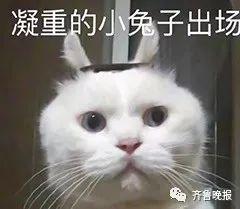 """【扎心】心疼孙子上学不易带他""""逃走""""…网友:确认过眼神,是亲奶奶"""