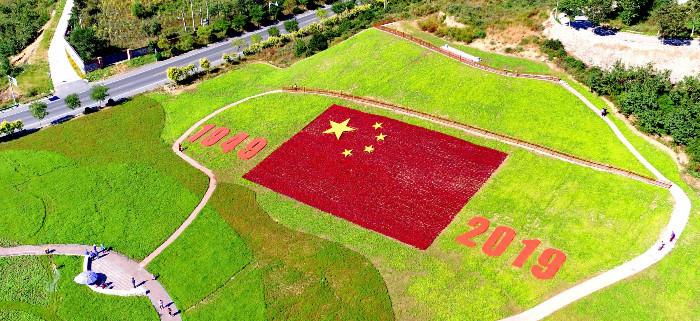 """秦皇岛:""""五星红旗""""花海向新中国成立70周年献礼"""