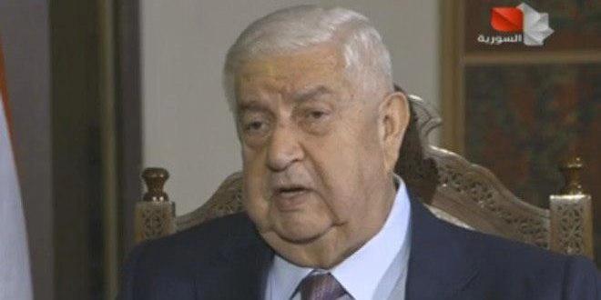 叙外长:叙宪法委员会由叙利亚领导 不接受外国势力干涉