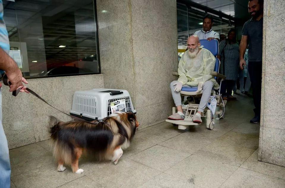 """主人因患上癌症被医生""""判死刑"""",直到他的狗来探病……"""