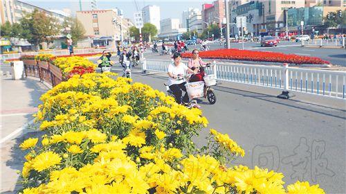 欢度国庆氛围浓!460余万盆鲜花扮靓衡水主城区!