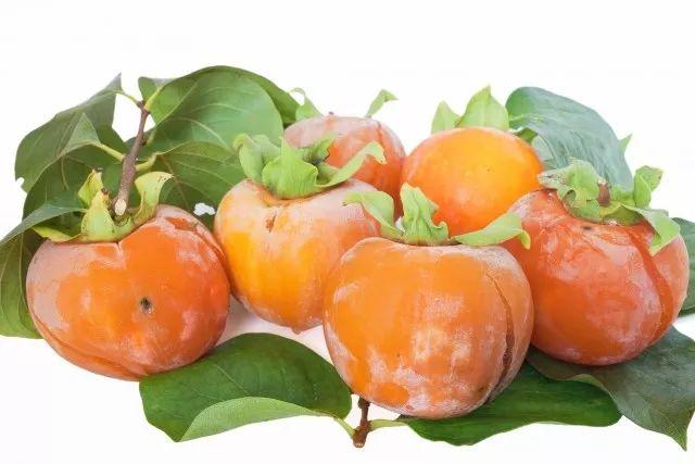 1个柿子10副药?秋柿这样吃,