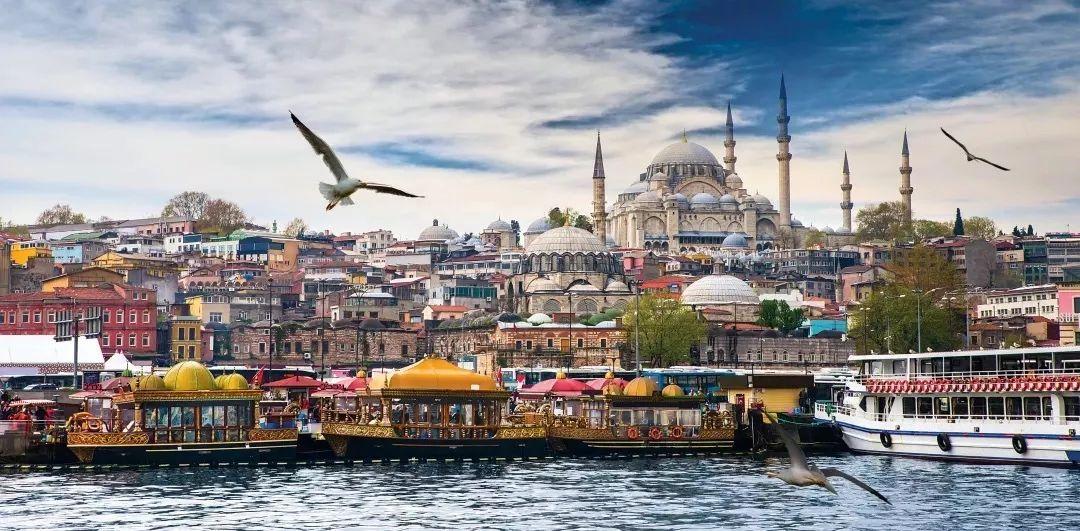 2019年土耳其经济总量_08年欧洲杯土耳其图片