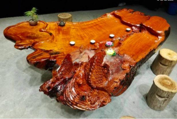 在农村很常见的香椿树,浑身都是 宝 ,树皮有妙用