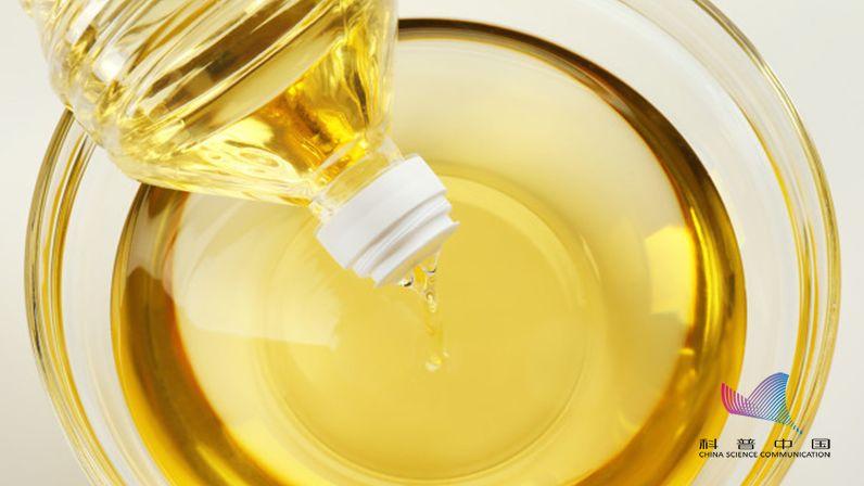 小小的油壶,使用不恰当会增加患癌风险?