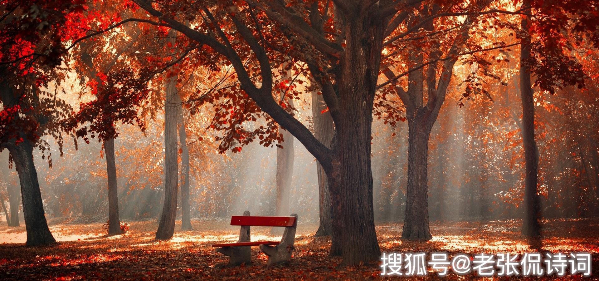 唐代著名女诗人写诗表白,深情无比,年长30多岁老诗人却不敢接受