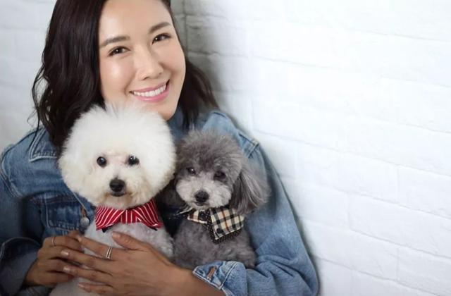 """TVB离巢花旦与""""港姐杀手""""前男友分手多年 依然饲养两人共同的狗"""
