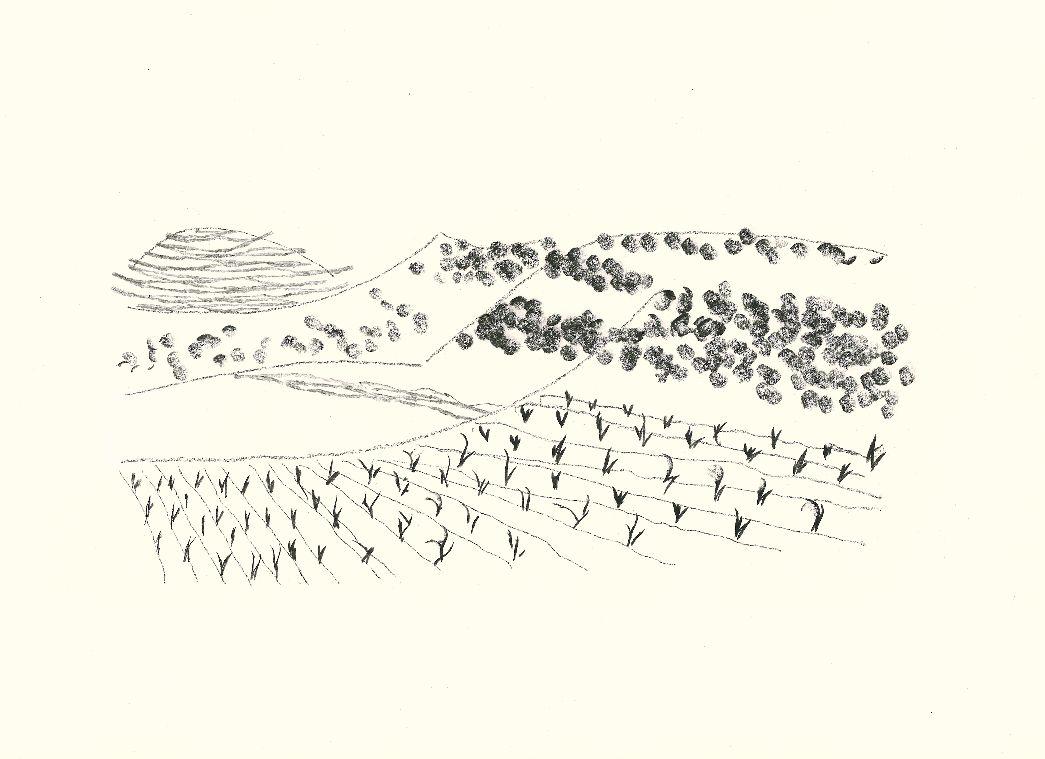 愹aiyla_今日·art 丨多明尼克·葛伯牙domènec corbella 的《科尔伯山谷》
