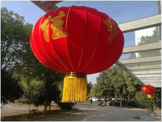 同抒爱国情 共筑中国梦