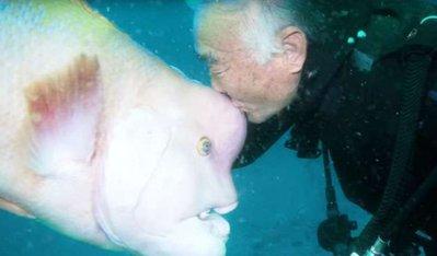 <b>老人跟海底怪鱼培养出25年感情,画面暖心!</b>