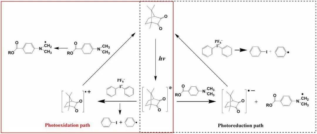 干膜光聚合反应的原理_男生生理反应图片
