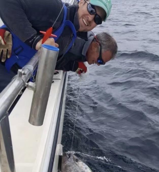爱尔兰渔民捕到金枪鱼后放生,2.6米540斤,价值2200万