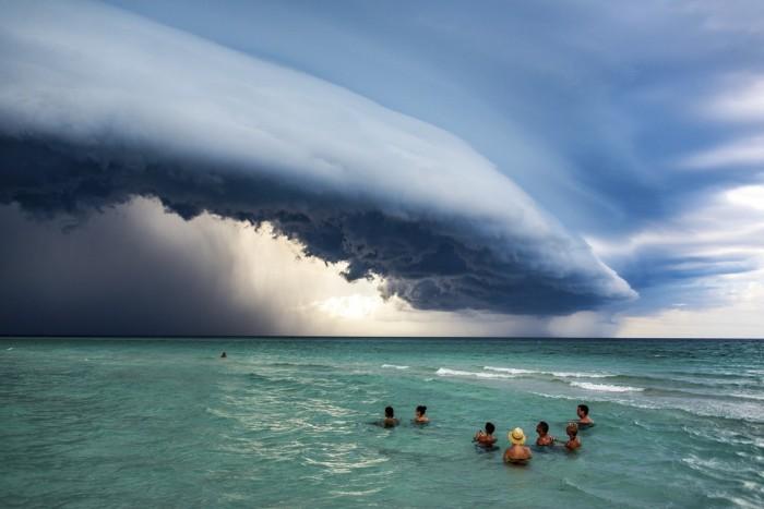 [图]大自然保护协会2019全球摄影大赛获奖作品赏析