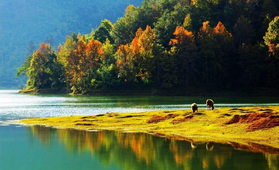拍出秋天的味道,这6种题材你可别错过 附拍摄技巧图片