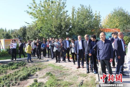 <b>全国新的社会阶层人士服务团赴新疆调研考察</b>
