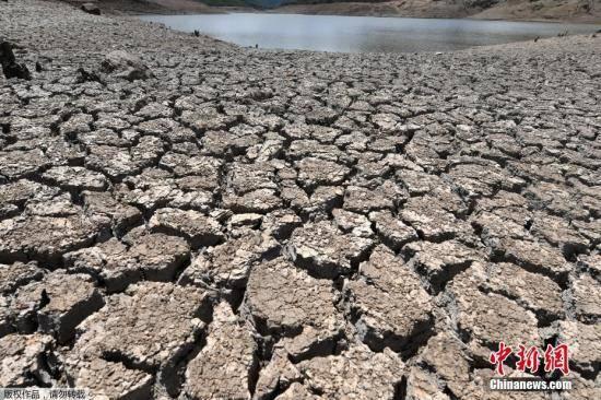 气候变暖致全球水灾频发 21世纪末六成麦田或遭毁