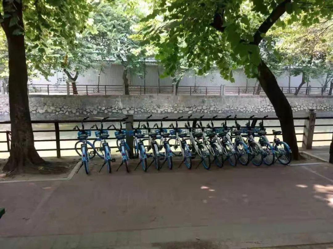 过分!广州男子扔90辆共享单车进河涌被刑拘   留言有福利
