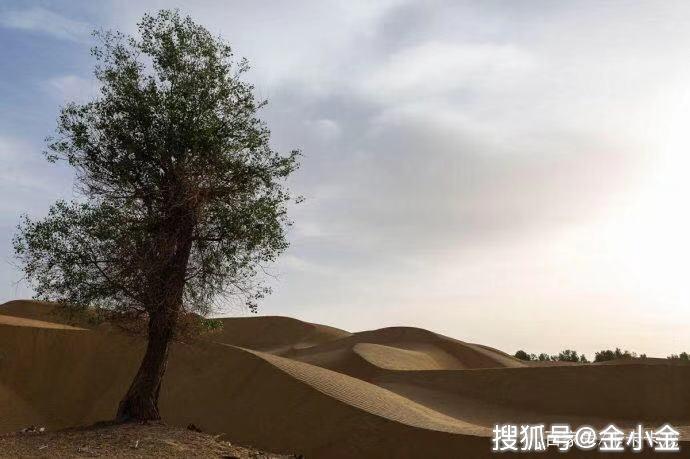 """中国最""""隐蔽""""的沙漠村庄,与世隔绝400多年,到底是什么身份?"""