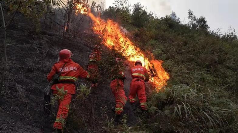 湖南衡东森林火灾过火面积4000余亩 暂无人员伤亡