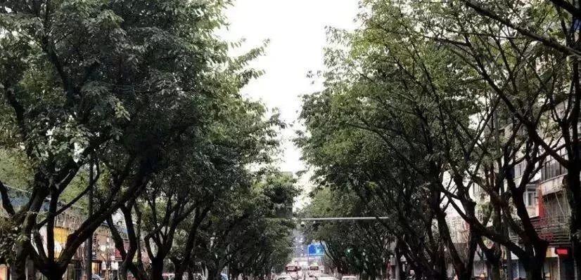 http://www.ncchanghong.com/nanchonglvyou/16505.html