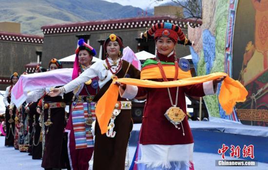 中国藏文化交流团近日访问瑞典