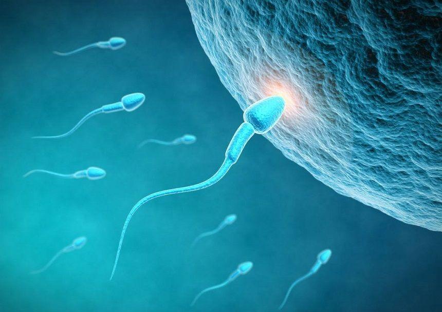 """检查时明明是""""女孩"""",生下来却是男宝,""""女翻男""""真的存在吗?"""
