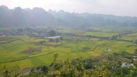 禾青村有多少人口_青禾男高图片