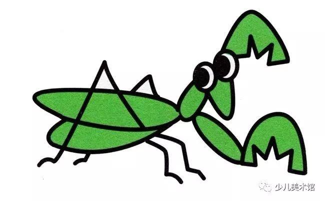 螳螂昆虫简笔画