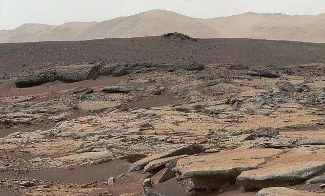 NASA首席科学家:明年会在火星找到生命,人类尚未准备好应对