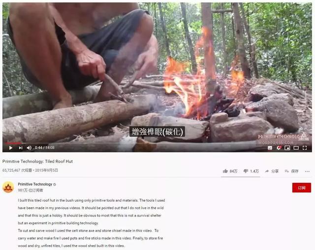 """""""男版李子柒""""火了,谁在批量制造原始生活方式?"""