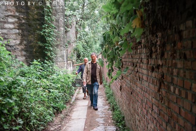 住长江上的院子,寻木洞古镇,探中坝小岛,这才是向往的生活