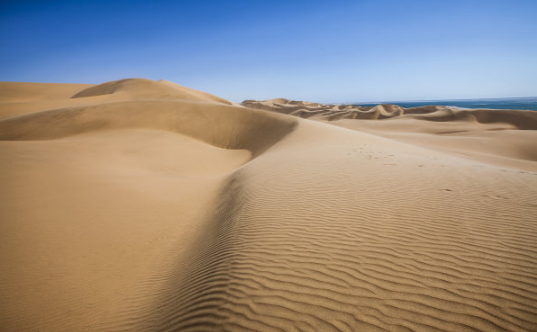"""沙漠旅游,看到""""玫瑰""""�s�o�熳撸�但�楹巍拔鞴�"""