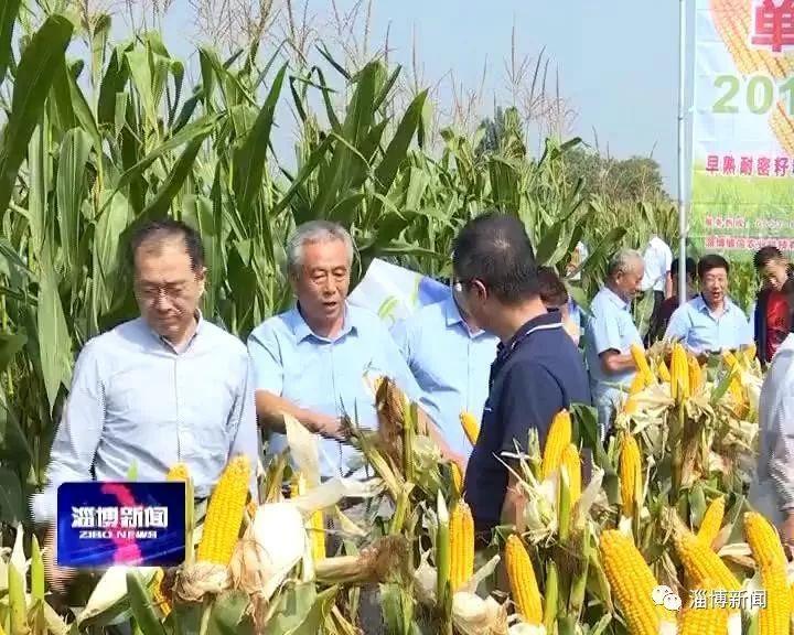 博信农业:着力种业研发保障粮食生产