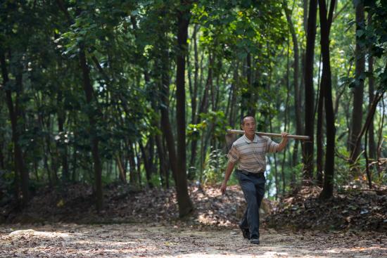 他是家族第三代林业人,坚守40年累计植树造林3.3万亩