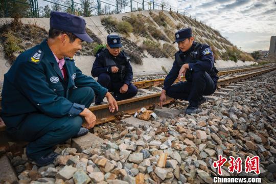 新疆铁警巡线途中救助一只受伤黄鸭