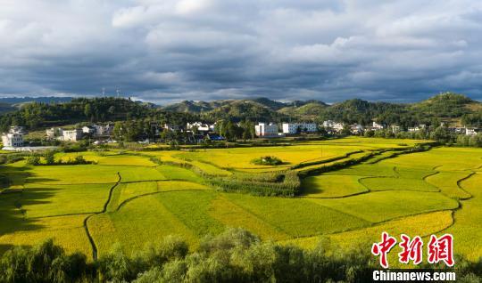 贵州:乡村旅游持续升温 带旺乡村带富村民_解放村