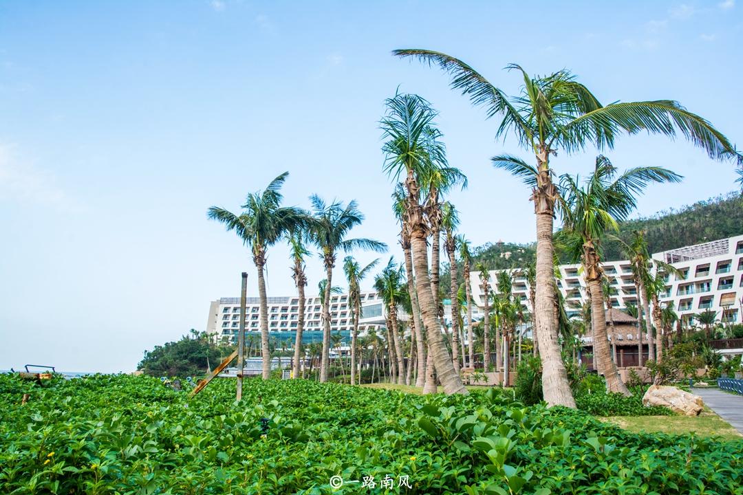 国庆假期避开人山人海休闲游,广东这三个地方美如画!