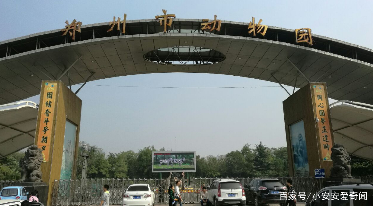 国庆假期,为何郑州动物园游客一天比一天少,看看园内动物的状态