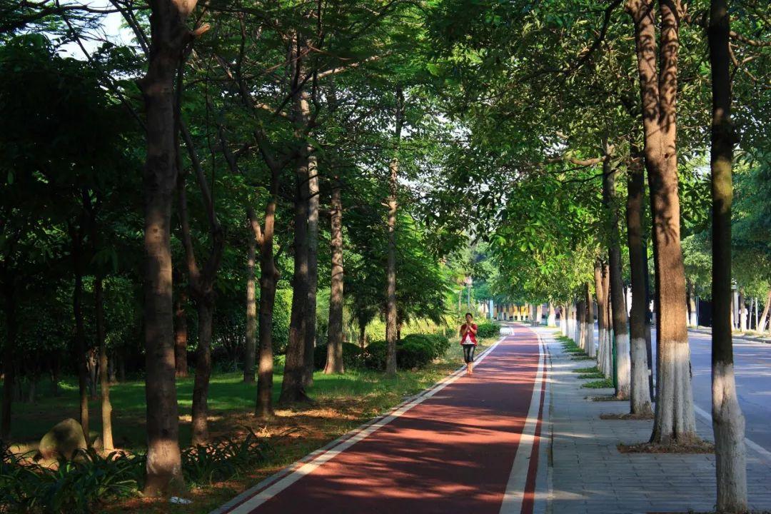 重要 |《中国公民环境与健康素养(试行)》面向社会公开征求修订意见
