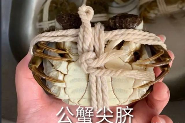 又到了大闸蟹最肥美的时节:如何辨公母?蒸螃蟹的小技巧!